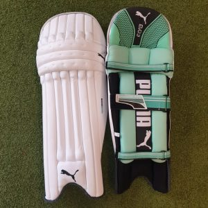 Puma Evo Speed 3 Senior Batting Pads