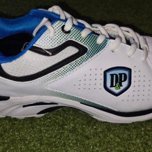 DP cricket spike